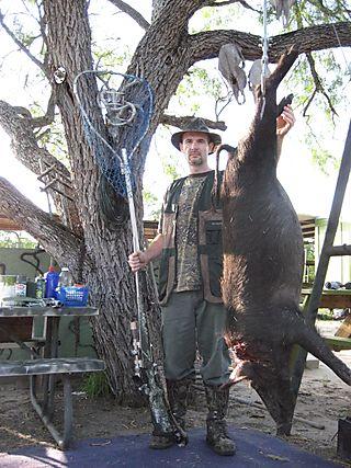 1st Pig a